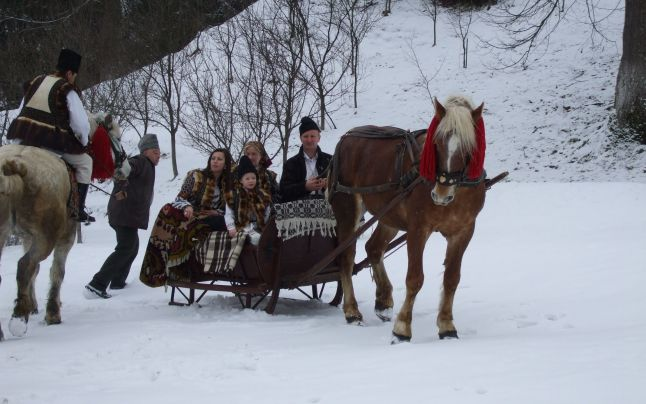 Ghiocelul Avrig Sleigh and Cart trip